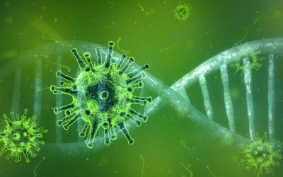 Corona-Virus: Aktuelle Informationen in verschiedenen Sprachen